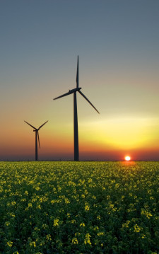 sustainable energy, energia, eolico