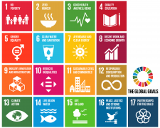 agenda 2030; sdgs; obiettivi di sviluppo sostenibile